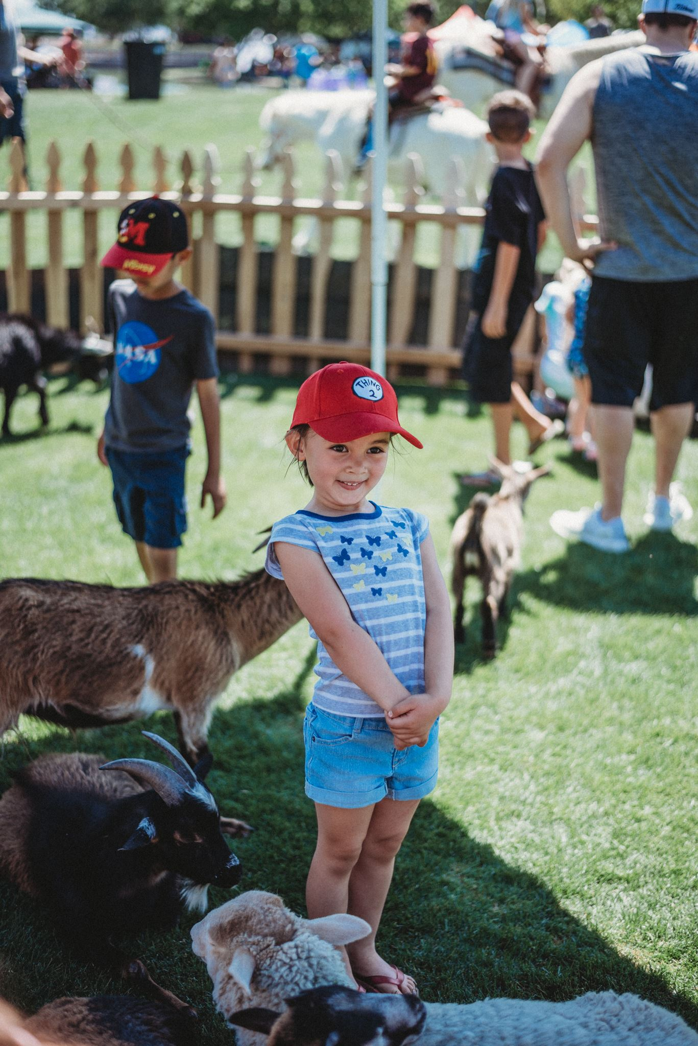 Toddler Posing Amidst Petting Zoo Goats and Sheep