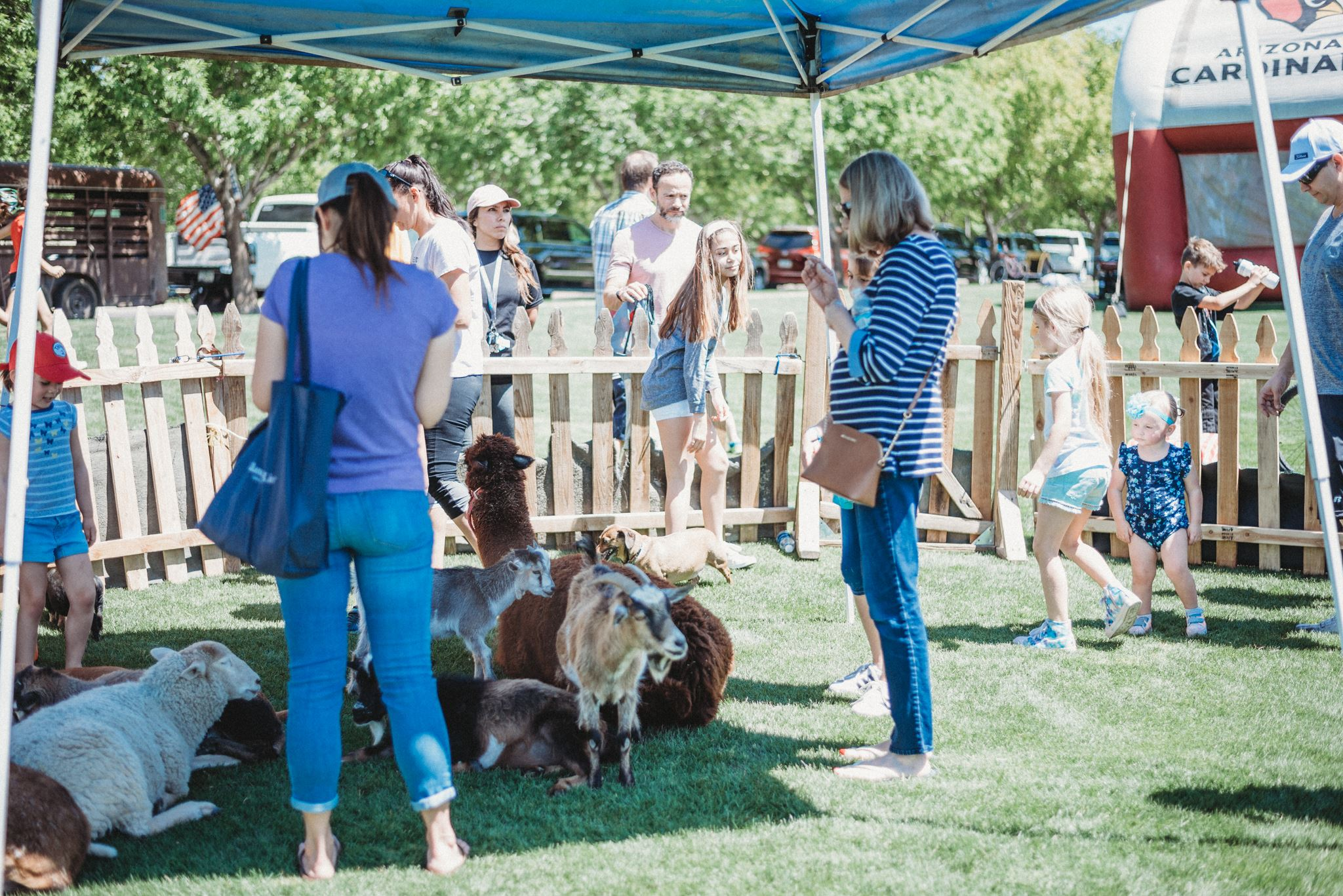 Women Looking at Petting Zoo Goats